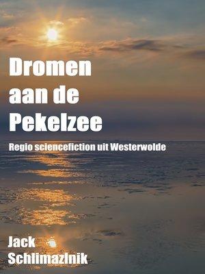 cover image of Dromen aan de Pekelzee
