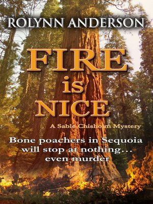 cover image of Fire is Nice