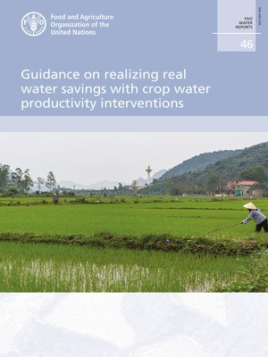cover image of Guidance on Realizing Real Water Savings with Crop Water Productivity Interventions