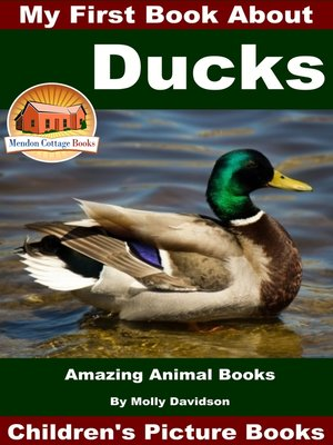 cover image of My First Book About Ducks