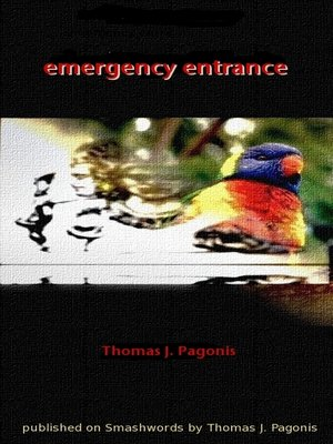 cover image of Emergency Entrance