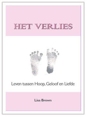 cover image of Het Verlies