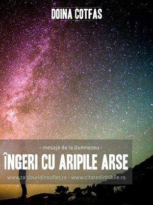cover image of Îngeri cu aripi arse (,,mesaje de la Dumnezeu,,)