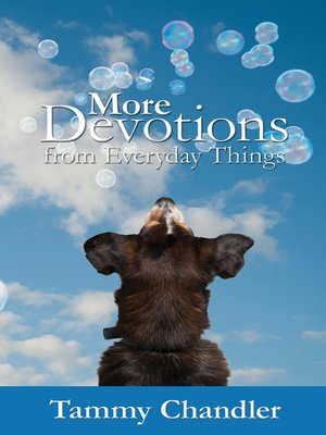 cover image of More Devotions from Everyday Things