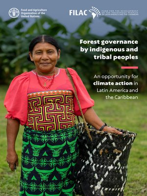 cover image of Forest Governance by Indigenous and Tribal Peoples. an Opportunity for Climate Action in Latin America and the Caribbean