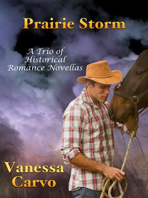 cover image of Prairie Storm