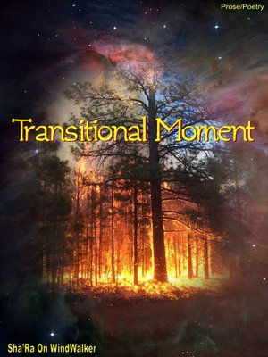 cover image of Transitional Moment