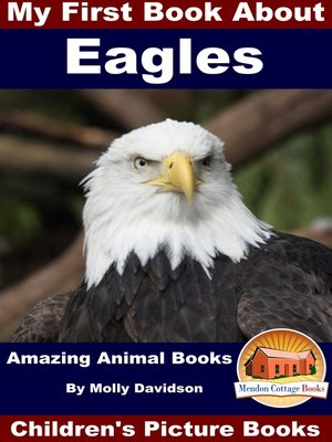 cover image of My First Book About Eagles