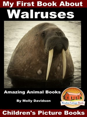 cover image of My First Book About Walruses