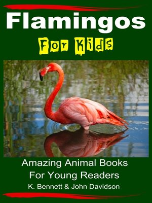 cover image of Flamingos For Kids