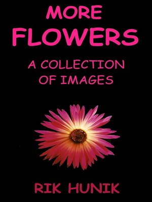 cover image of More Flowers
