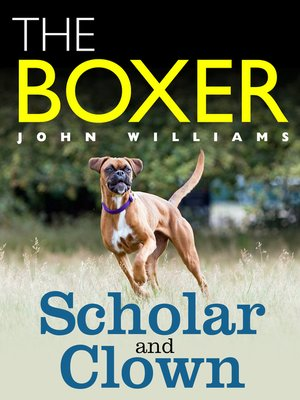 cover image of The Boxer