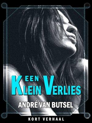 cover image of Een Klein Verlies