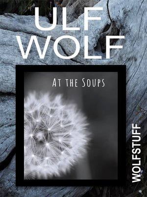cover image of At the Soups