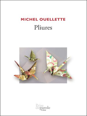 cover image of Pliures