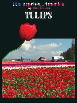 cover image of Tulips
