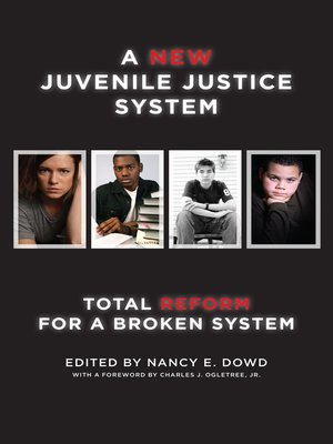 cover image of A New Juvenile Justice System