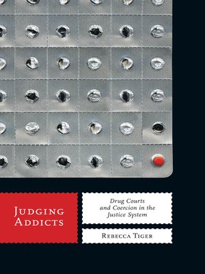 cover image of Judging Addicts