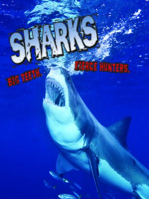 cover image of Sharks! Big Teeth. Fierce Hunters