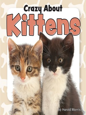 cover image of Crazy About Kittens