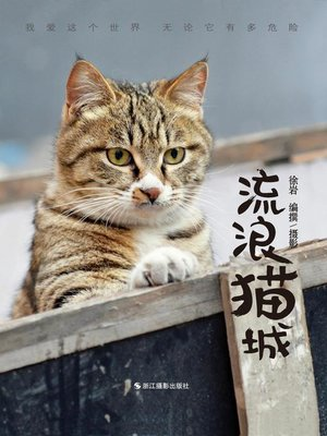 cover image of 流浪猫城 A City of Cats
