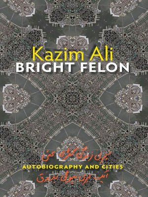 cover image of Bright Felon