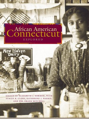 cover image of African American Connecticut Explored