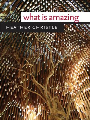 cover image of What Is Amazing
