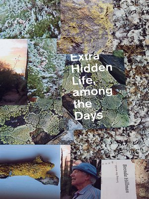 cover image of Extra Hidden Life, among the Days