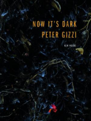 cover image of Now It's Dark