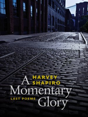 cover image of A Momentary Glory