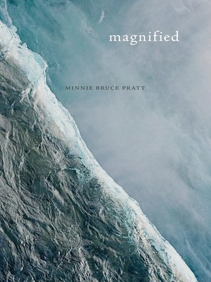 cover image of Magnified