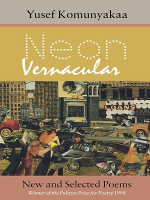 cover image of Neon Vernacular