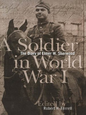 cover image of A Soldier in World War I