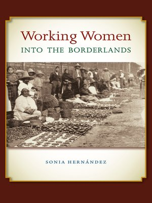 cover image of Working Women into the Borderlands