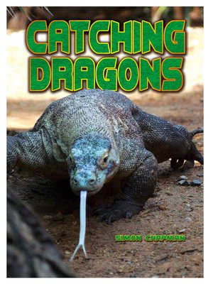cover image of Catching Dragons