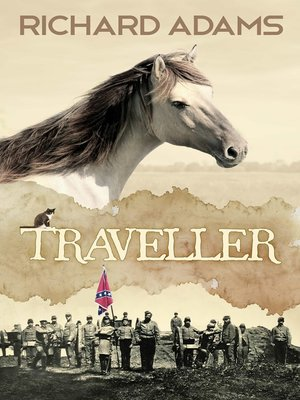 cover image of Traveller