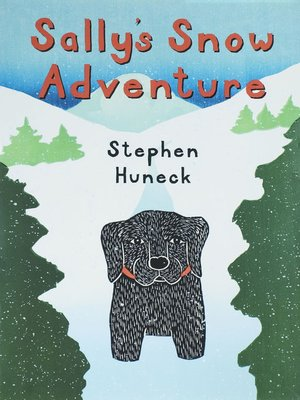 cover image of Sally's Snow Adventure