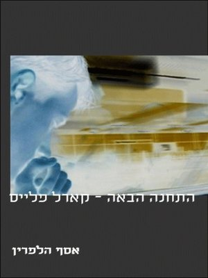 cover image of התחנה הבאה קארל פלייס (Next Stop Carle Place)