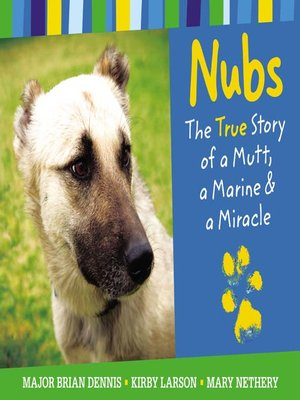 cover image of Nubs--The True Story of a Mutt, a Marine & a Miracle