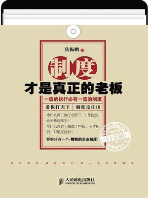 cover image of 制度才是真正的老板(白金版)