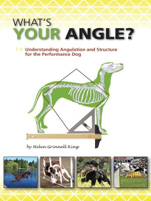 cover image of What's Your Angle?