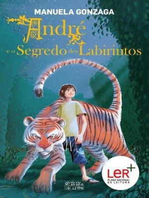 cover image of André e o Segredo dos Labirintos