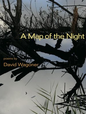 cover image of A Map of the Night