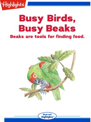 cover image of Busy Birds, Busy Beaks