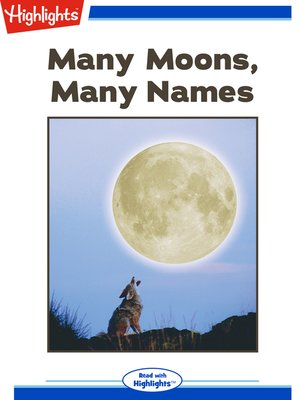 cover image of Many Moons Many Names