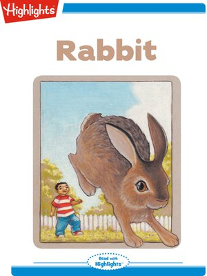 cover image of Rabbit