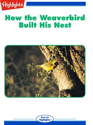 cover image of How the Weaverbird Built His Nest