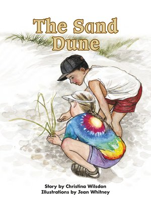 cover image of The Sand Dune