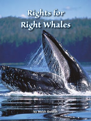 cover image of Rights for Right Whales